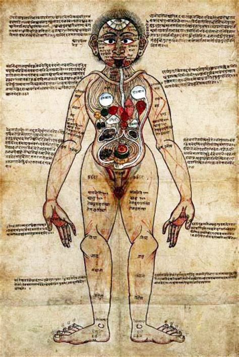 OVERVIEW OF INDIAN HEALING TRADITIONS | History and